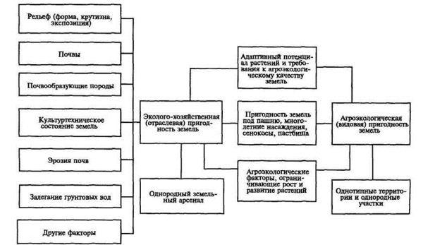 Схема эколого-хозяйственного и